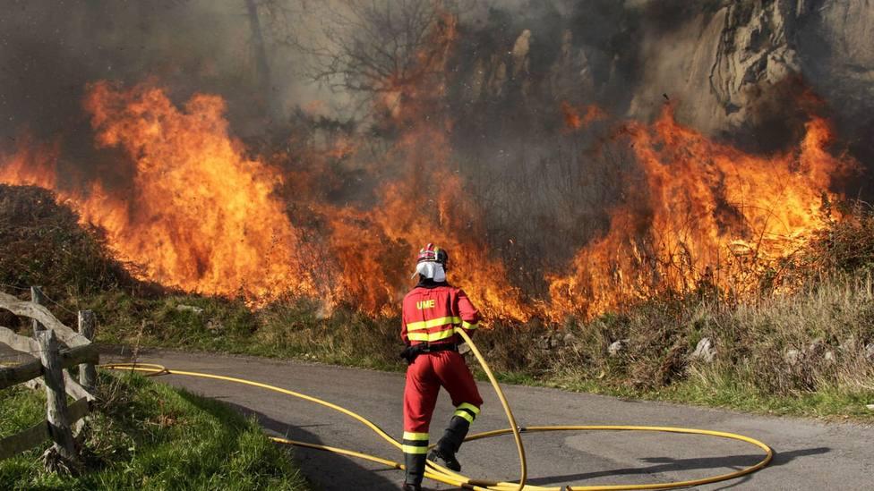 Ola de calor y riesgo de incendios
